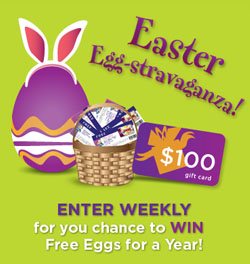 free-eggs-in-burnbrae-farms-egg-stravaganza-contest-250